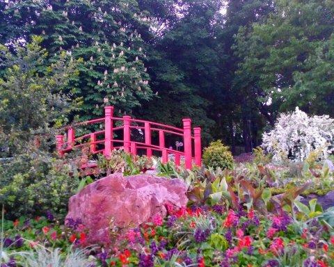 У Києві на Співочому полі створили квітучий японський парк