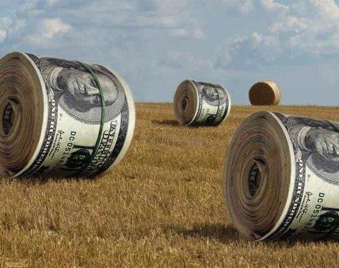 Відміна мораторію на землю: гектари продадуть за копійки