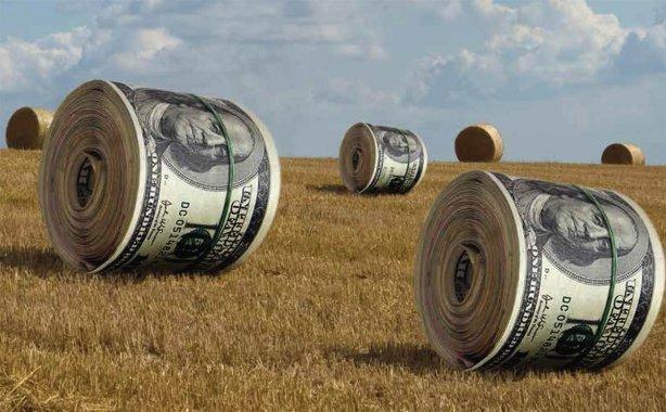Названі терміни прийняття земельної реформи в Україні