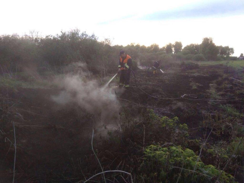 На Київщині вже добу палають торфяники, є фото