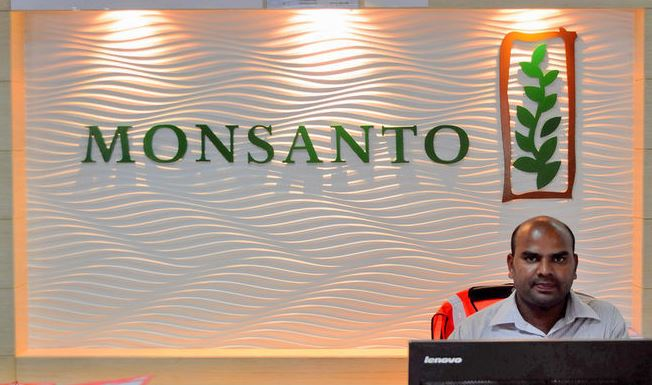 Monsanto в2018г.планирует запустить семенной завод вЖитомирской области