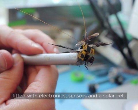 Американські вчені створили бабку-кіборга, оприлюднено відео