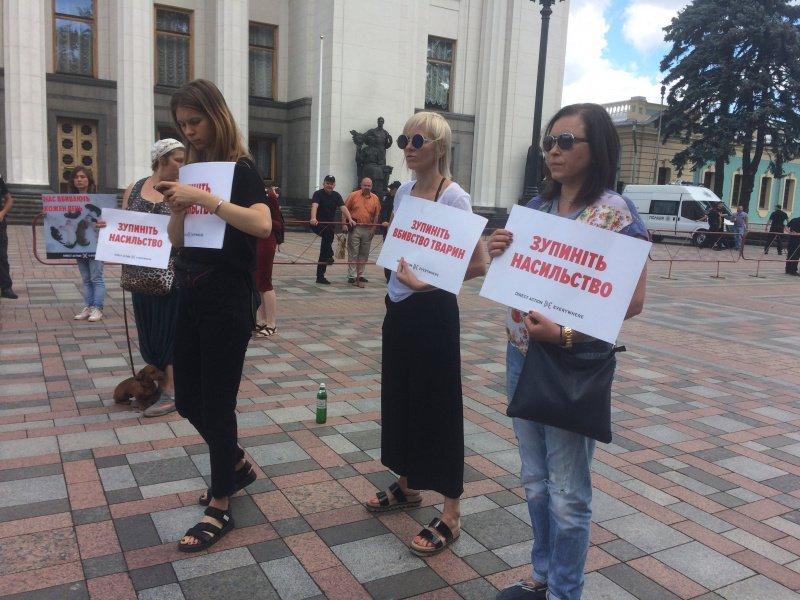 Верховная Рада ввела уголовную ответственность за зверское  обращение сживотными