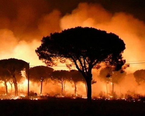 В Іспанії вирують лісові пожежі, евакуйовані кілька тисяч людей