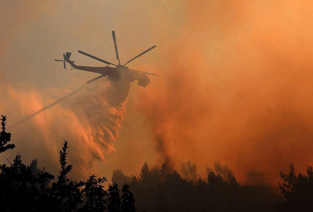 Пожар произошел вчернобыльской зоне отчуждения