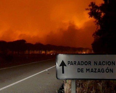 В Іспанії масштабна пожежа, евакуювано тисячі людей: опубліковано фото та відео