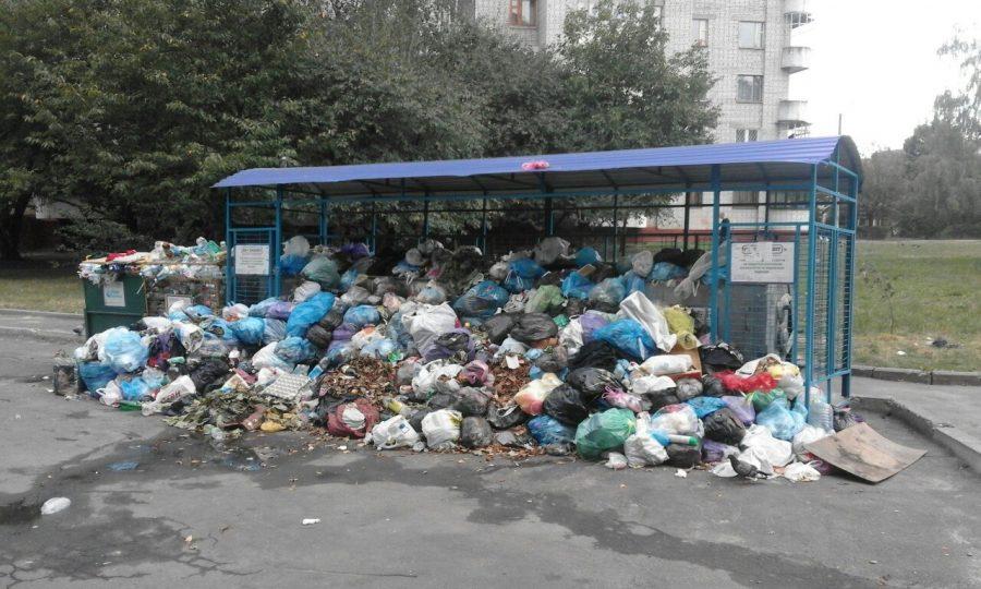 Львівська ОДА: Львів упродовж двох тижнів буде очищено від сміття