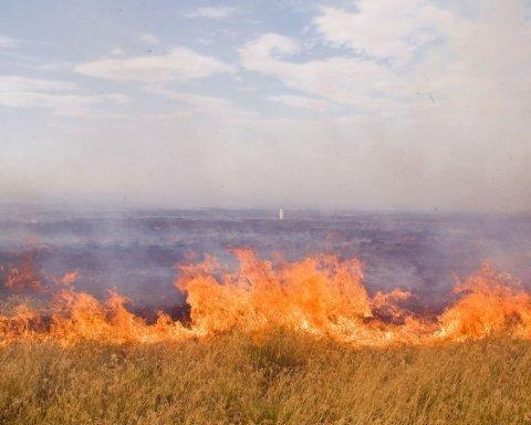 В Житомирской области горела свалка площадью 600 квадратных метров
