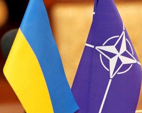 В украинской власти сделали громкое заявление о вступлении в НАТО