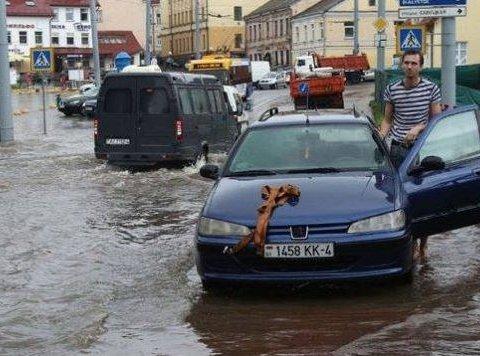 На Беларусь обрушилась мощная непогода: опубликованы фото