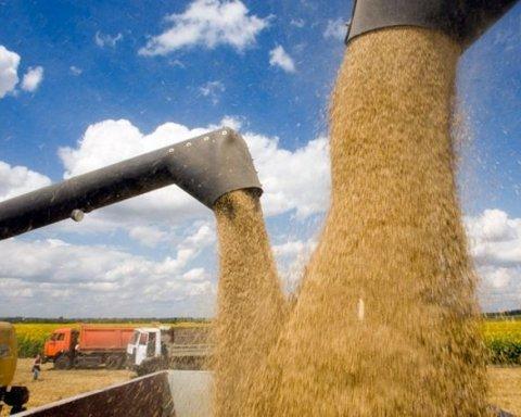 В Кабмине рассказали, каким будет урожай зерновых в 2017 году