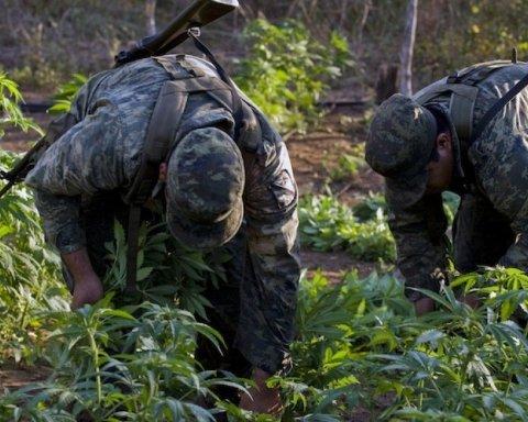 На Дніпропетровщині затримано військослужбовця-наркоділера