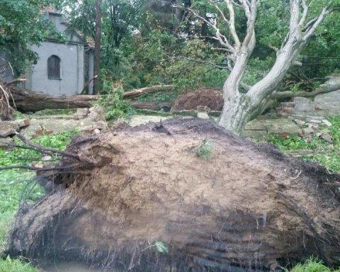 Урагани в Польщі: стали відомі подробиці про постраждалих