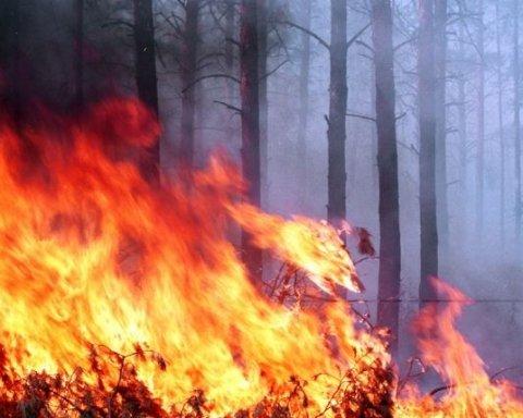 Спасатели сообщили об огромном количестве пожаров в Украине