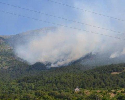 Масштабный пожар в Крыму: стали известны подробности