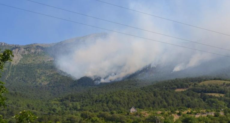Cотрудники экстренных служб вКрыму гасят лесной пожар