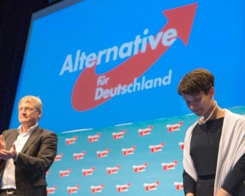 Членов правопопулистской партии в Германии подозревают в работе на РФ