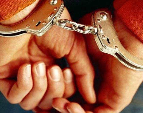 Стали відомі подробиці затримання у Нідерландах двох аферистів з України