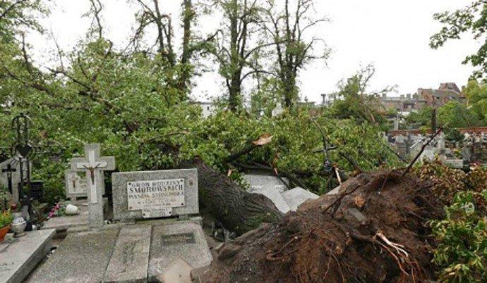 Ураганы в Польше: стали известны подробности о пострадавших