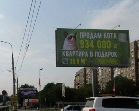 В Росії кота оцінили у вартість квартири