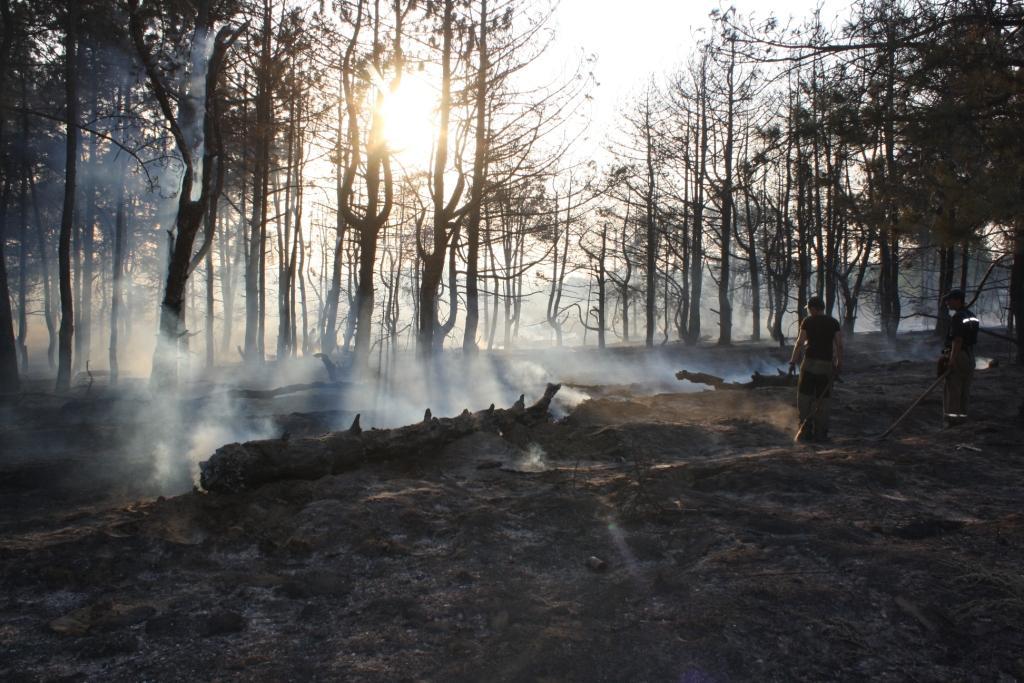 На Хортиці сталася пожежа, оприлюднені фото
