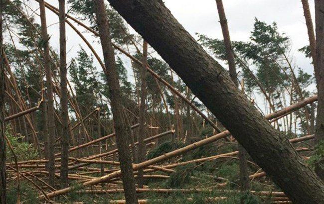Появилось впечатляющее видео последствий мощного урагана в Польше