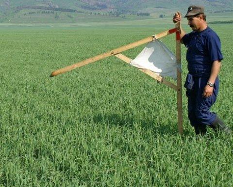 Мораторій на продаж землі: чого чекати українцям