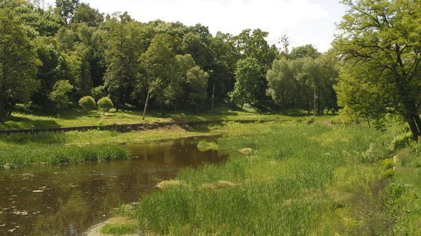Устоличному парку раптово почервороніло озеро