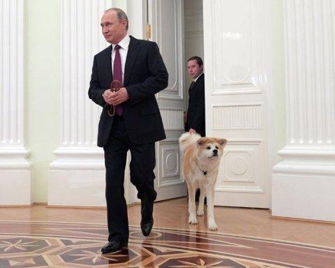 Новая карикатура на Путина взорвала сеть (фото)