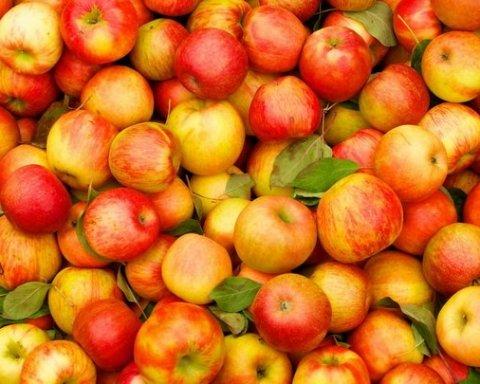 Вартість яблук рекордно зросте вже найближчим часом