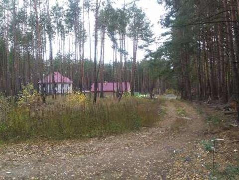 Как киевлянам бесплатно получить 10 соток земли