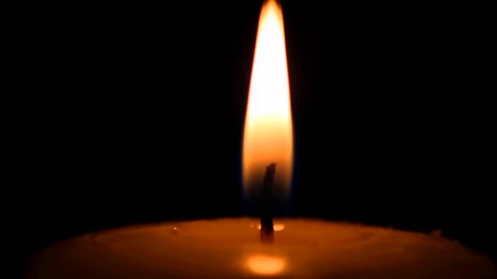 НаЛьвівщині знайшли мертвою зниклу напередодні 9-річну дівчинку