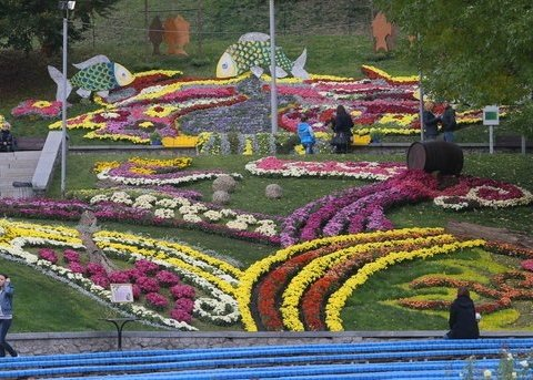 Виставка квітів на Співочому полі: найяскравіші фото