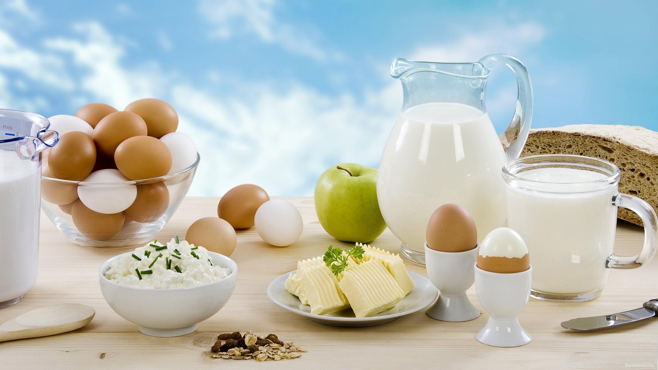 9 малоизвестных фактов о куриных яйцах