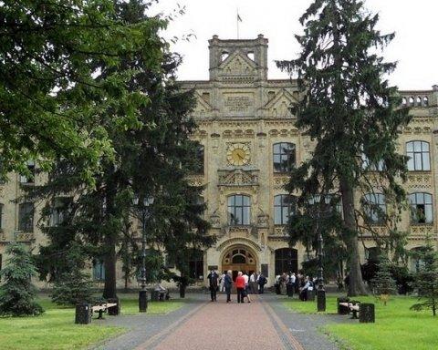 100-річні ялинки спиляли в одному із парків  столиці: кияни лютують