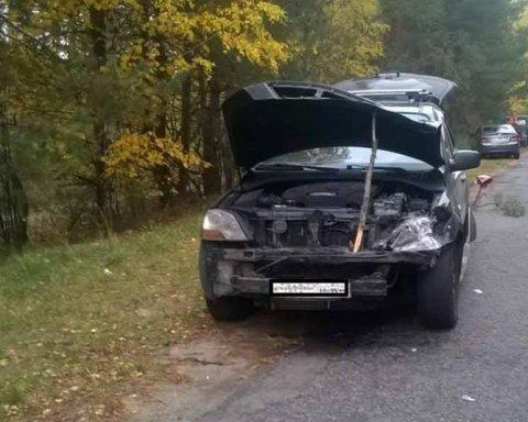 Второй раз за неделю: автомобиль сбил лося под Киевом