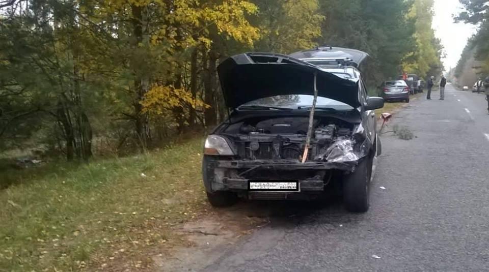 Вдруге за тиждень: авто збило лося під Києвом