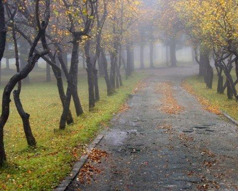 Стало известно, когда в Украине существенно похолодает
