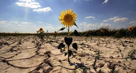 Юг Украины станет пустыней: ученые ошеломили прогнозом