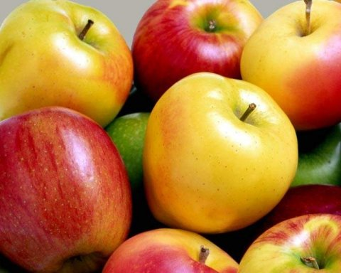 Какие сорта яблок полезны для здоровья