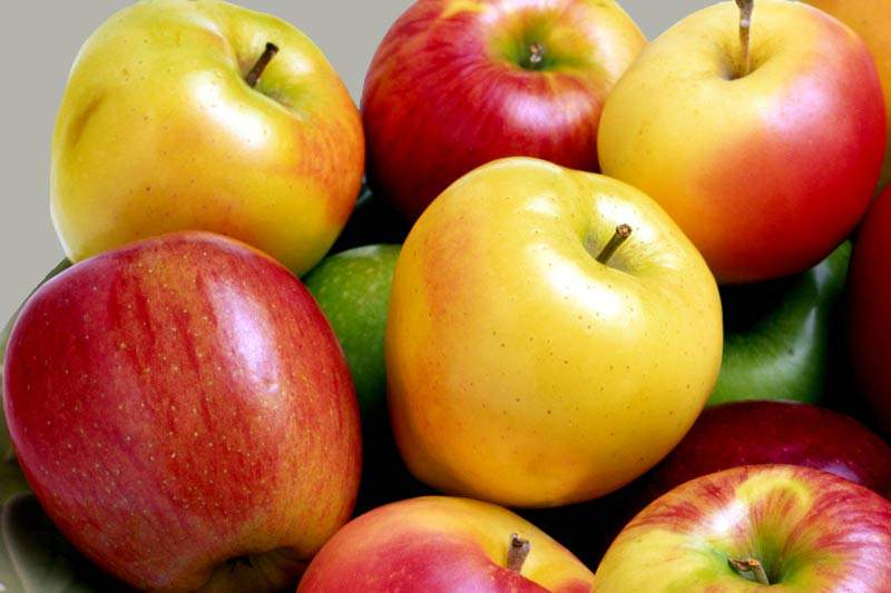 Чудо-фрукт омолаживает сразу на несколько лет