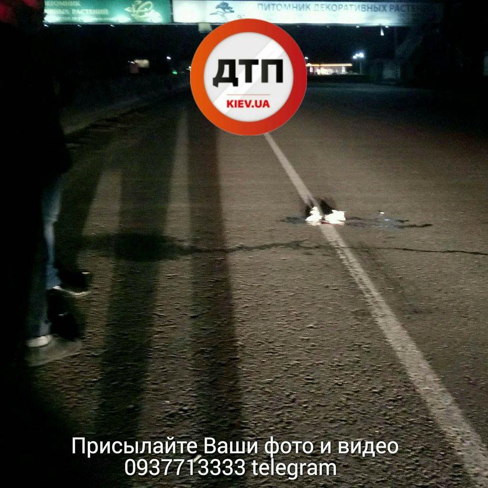 ВКрасноярском крае шофёр  сбил насмерть 3-х  пешеходов