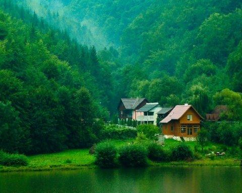 Дивовижні будинки серед лісу, у яких хочеться жити (фото)