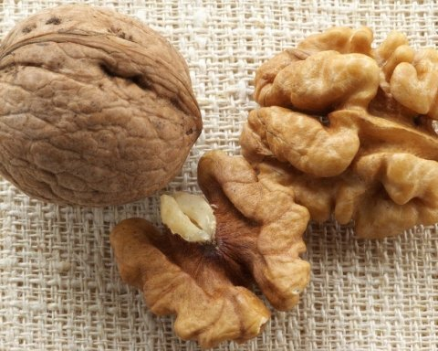 Украинцы могут озолотиться на экспорте орехов