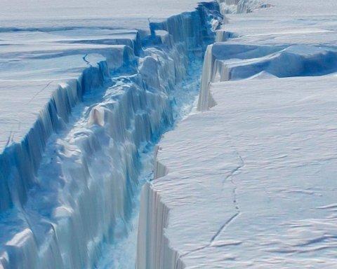 Айсберг, що відколовся, відкрив в Антарктиді унікальне життя