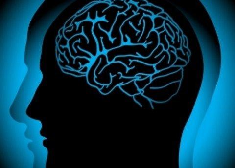ТОП-5 звичок, які збережуть мозок молодим