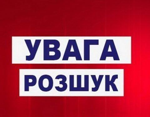 Киевлян просят помочь разыскать 12-летнюю девушку