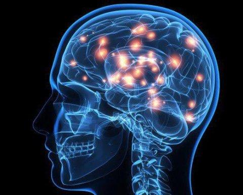 Эти десять советов помогут оздоровить мозг