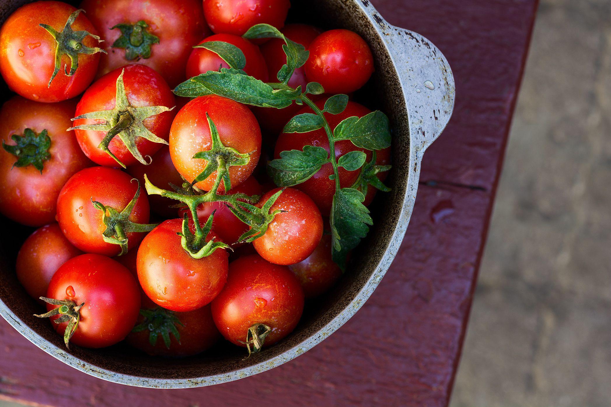 помідори, томати
