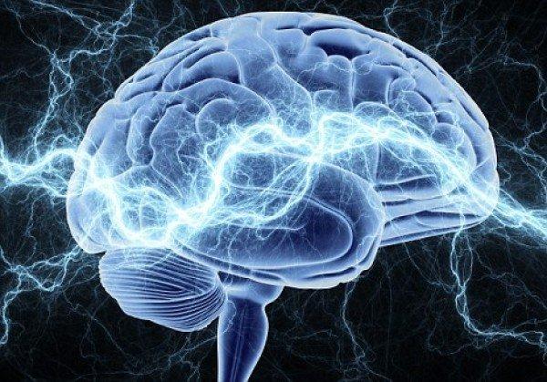 Остановить старение мозга и улучшить память поможет простой рецепт